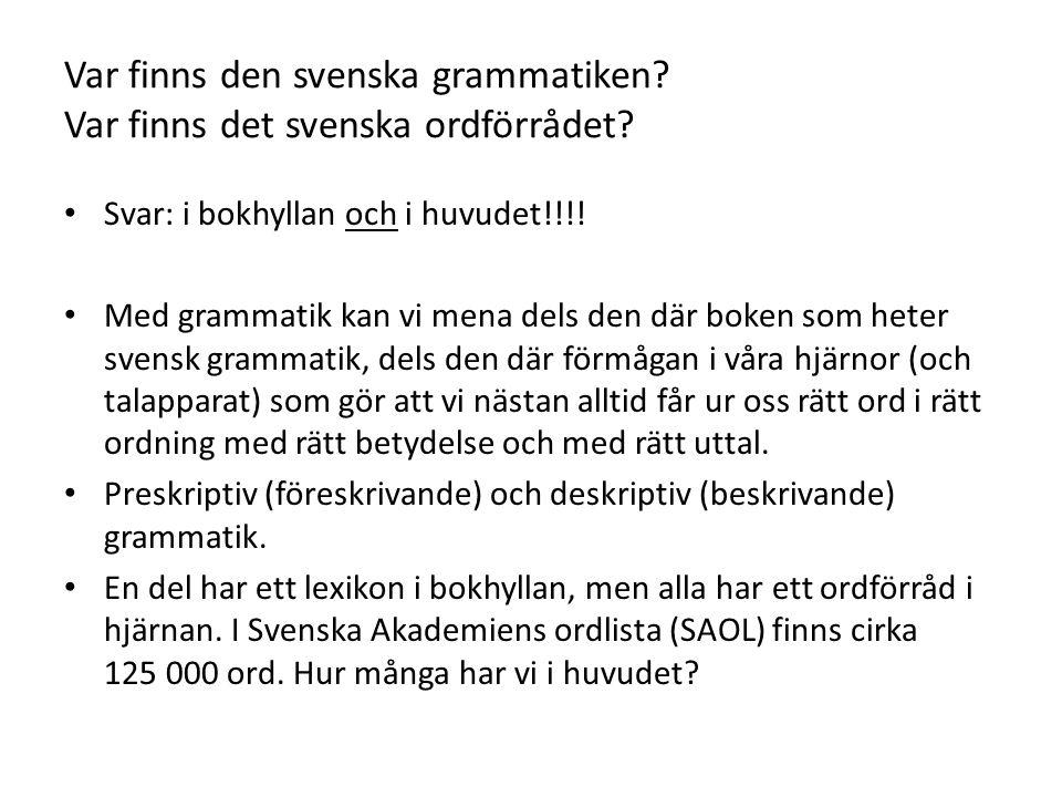Var finns den svenska grammatiken. Var finns det svenska ordförrådet.