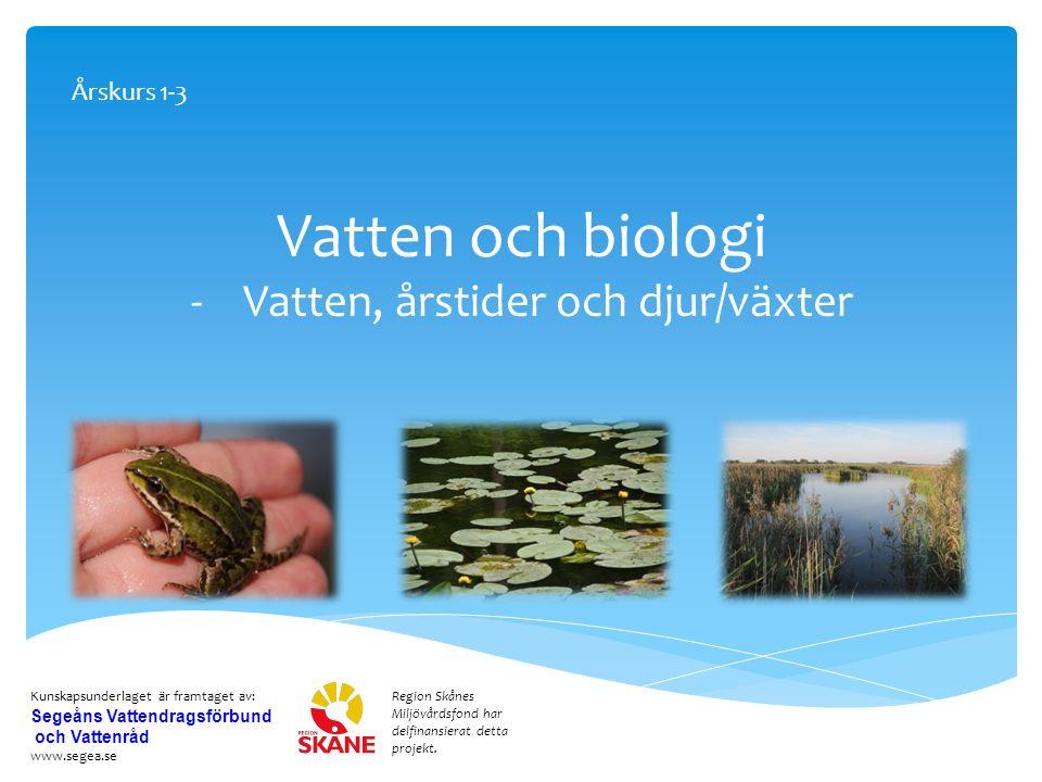 Vatten och biologi -Vatten, årstider och djur/växter Region Skånes Miljövårdsfond har delfinansierat detta projekt.