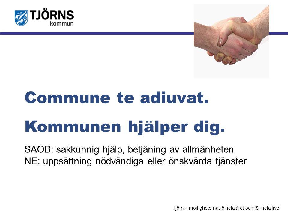 Möjligheternas ö Kommunen hjälper dig. Commune te adiuvat. SAOB: sakkunnig hjälp, betjäning av allmänheten NE: uppsättning nödvändiga eller önskvärda