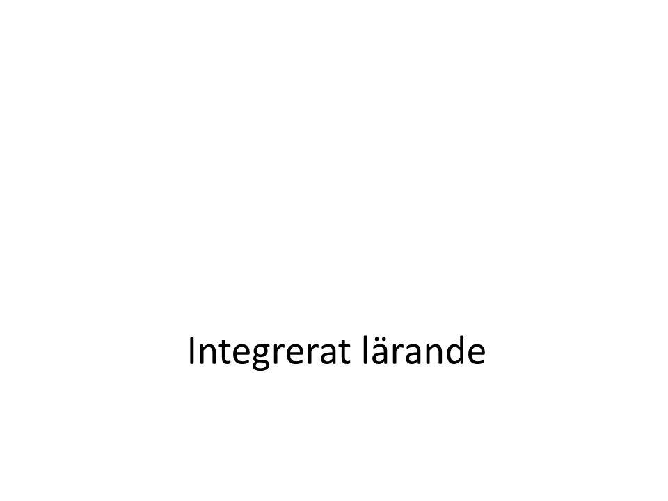 Integrerat lärande