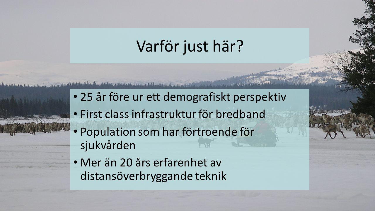 Arbetsgrupper I drift Medborgargrupp.Verksamhetsgrupp, primärvård och kommunal omsorg.