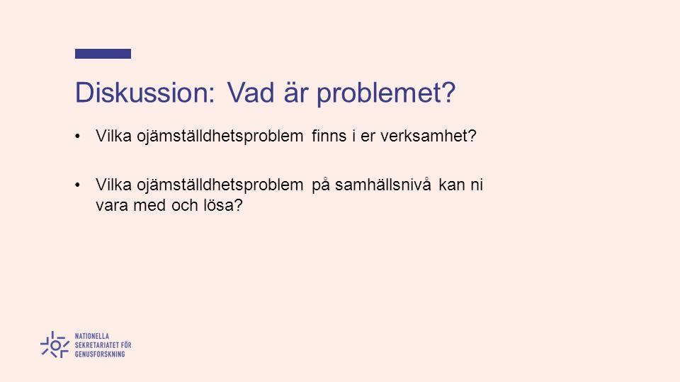 Diskussion: Vad är problemet. Vilka ojämställdhetsproblem finns i er verksamhet.