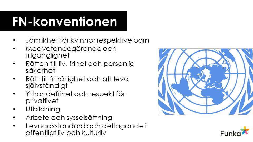 FN-konventionen Jämlikhet för kvinnor respektive barn Medvetandegörande och tillgänglighet Rätten till liv, frihet och personlig säkerhet Rätt till fri rörlighet och att leva självständigt Yttrandefrihet och respekt för privatlivet Utbildning Arbete och sysselsättning Levnadsstandard och deltagande i offentligt liv och kulturliv