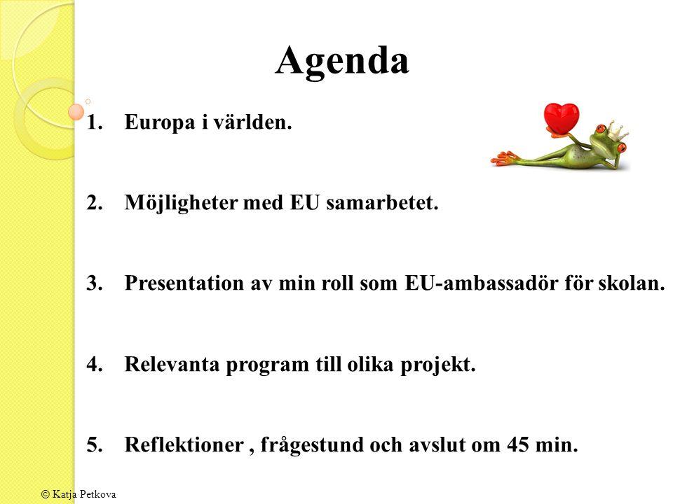 Agenda 1.Europa i världen. 2.Möjligheter med EU samarbetet.