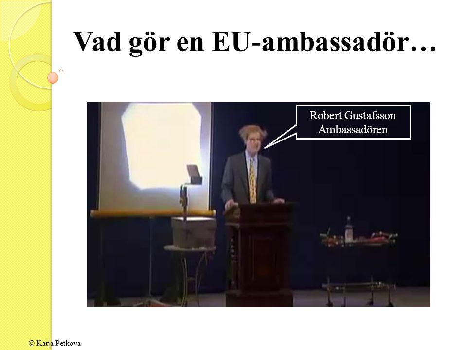 Vad gör en EU-ambassadör… Robert Gustafsson Ambassadören © Katja Petkova