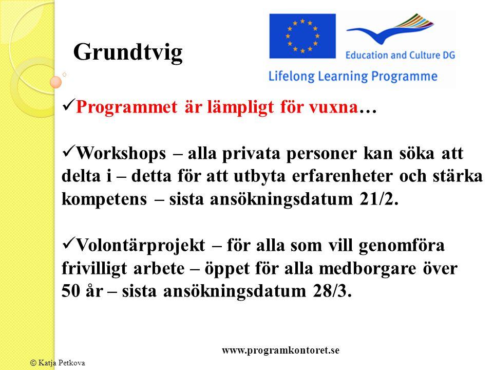 © Katja Petkova Grundtvig Programmet är lämpligt för vuxna… Workshops – alla privata personer kan söka att delta i – detta för att utbyta erfarenheter och stärka kompetens – sista ansökningsdatum 21/2.