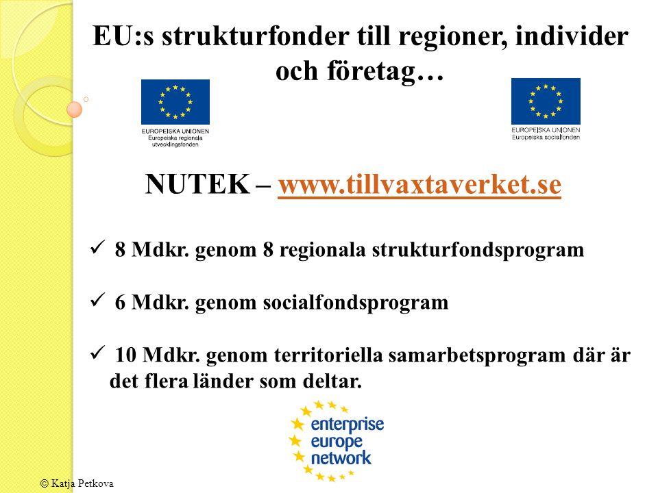 EU:s strukturfonder till regioner, individer och företag… NUTEK – www.tillvaxtaverket.sewww.tillvaxtaverket.se 8 Mdkr.