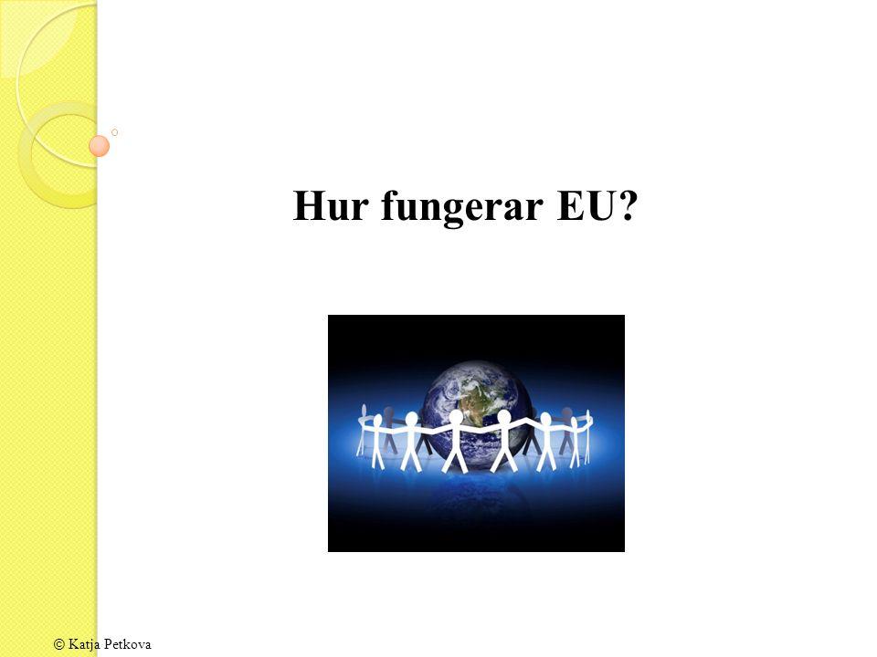 Hur fungerar EU?
