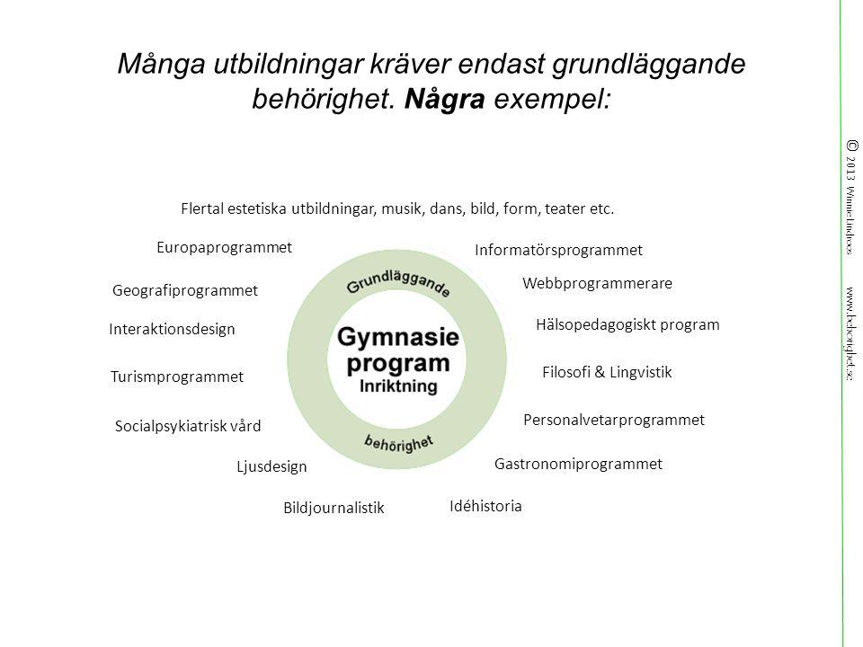 © 2013 Winnie Lindroos www.behorighet.se Många utbildningar kräver endast grundläggande behörighet.