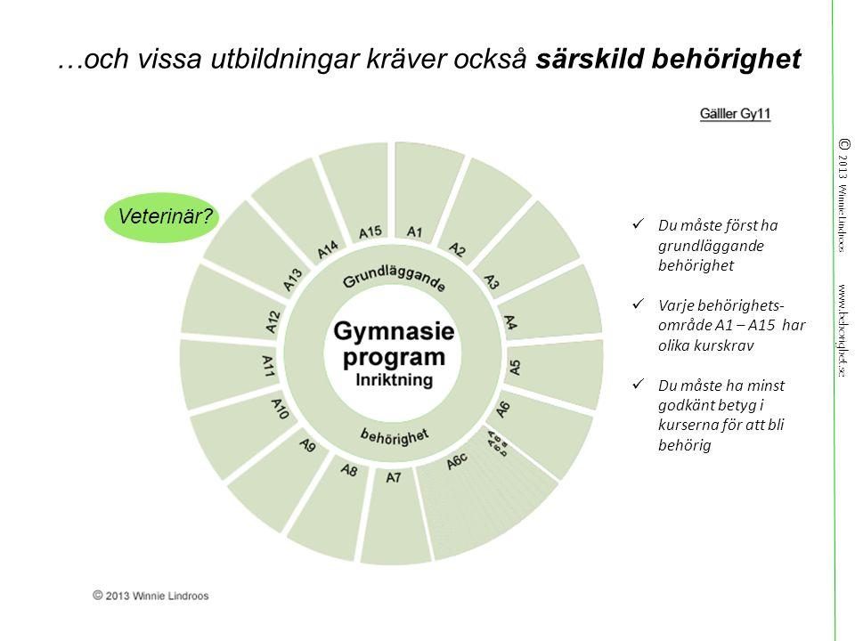 © 2013 Winnie Lindroos www.behorighet.se Veterinär.