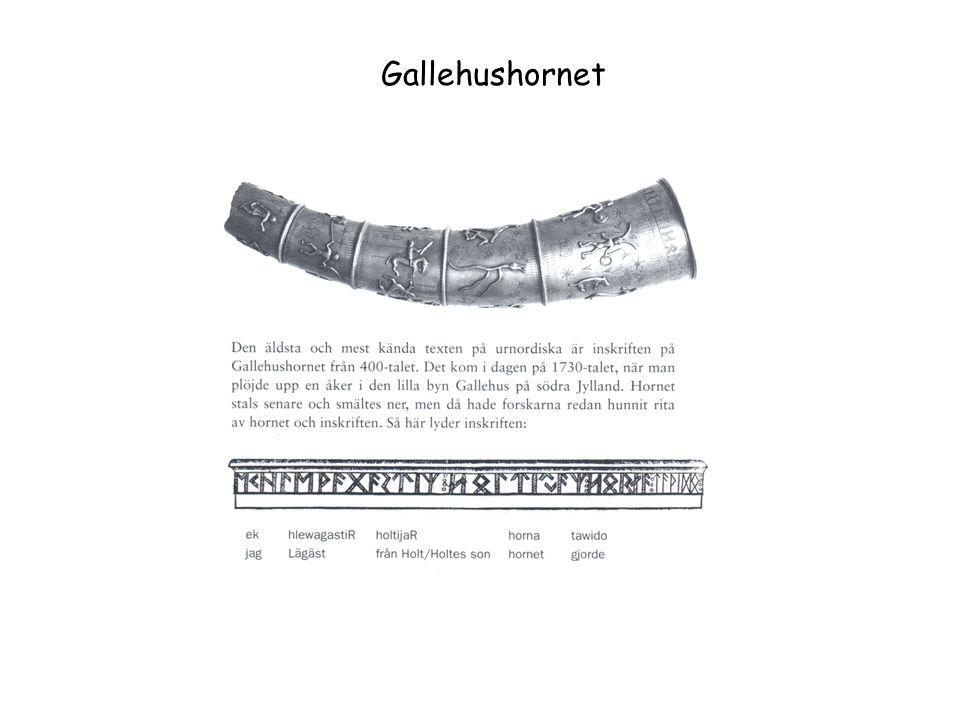 Gallehushornet