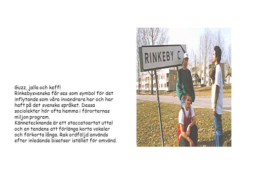 Guzz, jalla och keff! Rinkebysvenska får ses som symbol för det inflytande som våra invandrare har och har haft på det svenska språket. Dessa sociolek