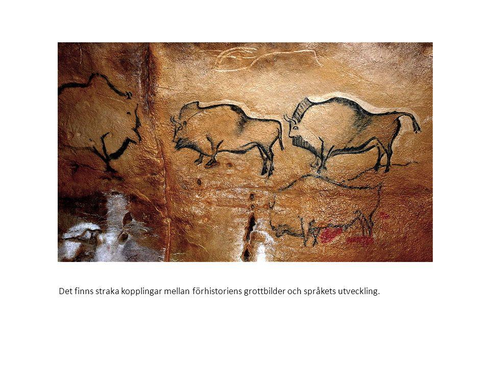 Det finns straka kopplingar mellan förhistoriens grottbilder och språkets utveckling.