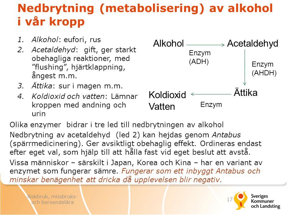 Nedbrytning (metabolisering) av alkohol i vår kropp Olika enzymer bidrar i tre led till nedbrytningen av alkohol Nedbrytning av acetaldehyd (led 2) ka