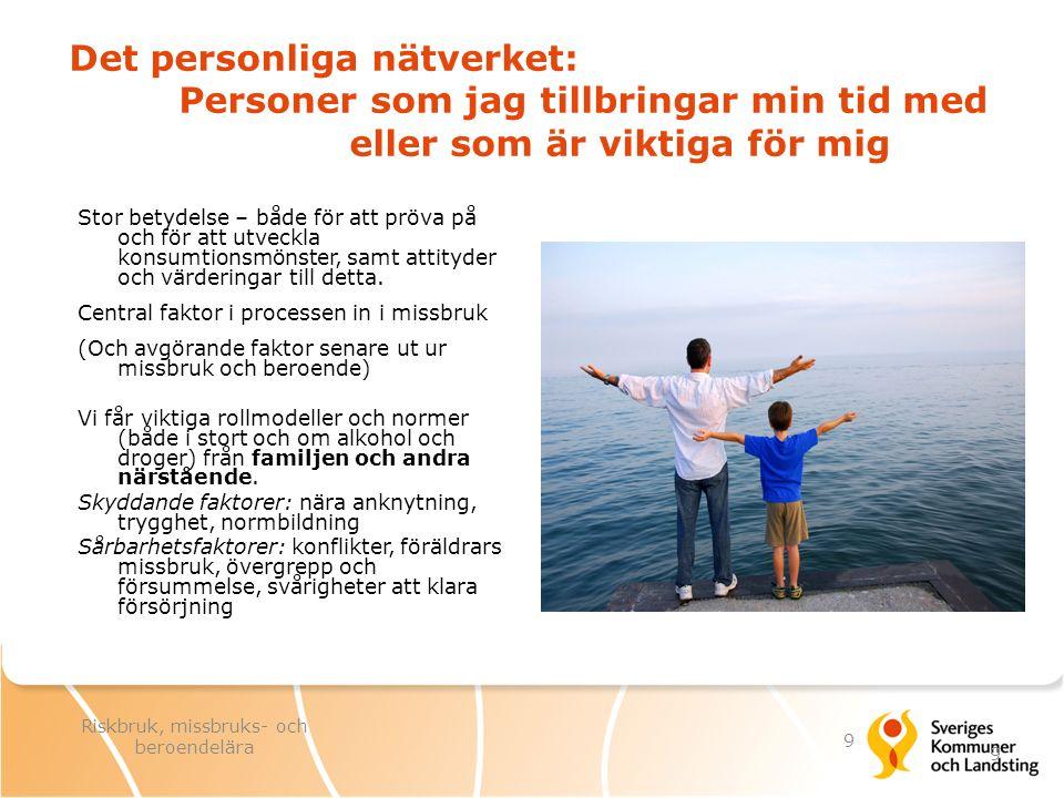 I ungdomsåren spelar kamrater och partner allt viktigare roll.