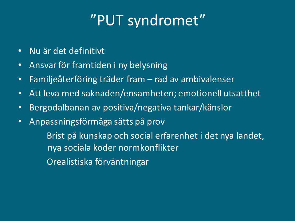 """""""PUT syndromet"""" Nu är det definitivt Ansvar för framtiden i ny belysning Familjeåterföring träder fram – rad av ambivalenser Att leva med saknaden/ens"""