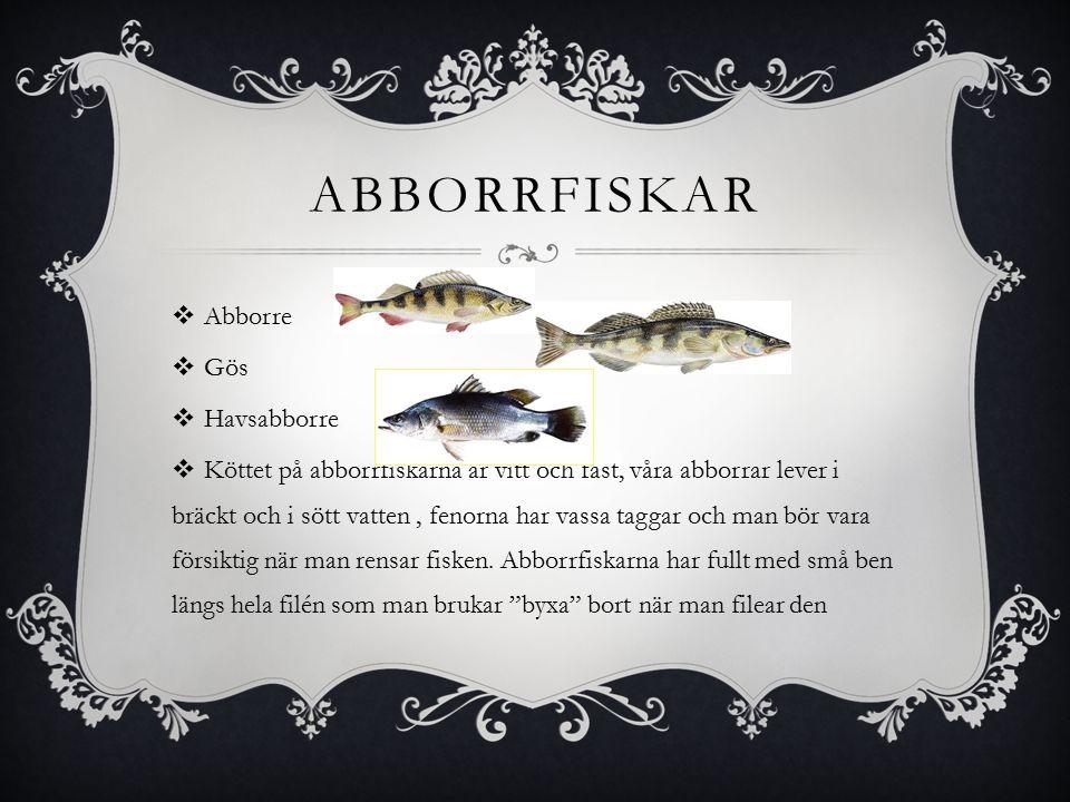 ABBORRFISKAR  Abborre  Gös  Havsabborre  Köttet på abborrfiskarna är vitt och fast, våra abborrar lever i bräckt och i sött vatten, fenorna har vassa taggar och man bör vara försiktig när man rensar fisken.