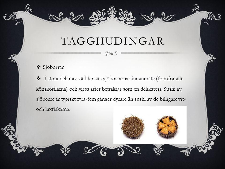 TAGGHUDINGAR  Sjöborrar  I stora delar av världen äts sjöborrarnas innanmäte (framför allt könskörtlarna) och vissa arter betraktas som en delikatess.