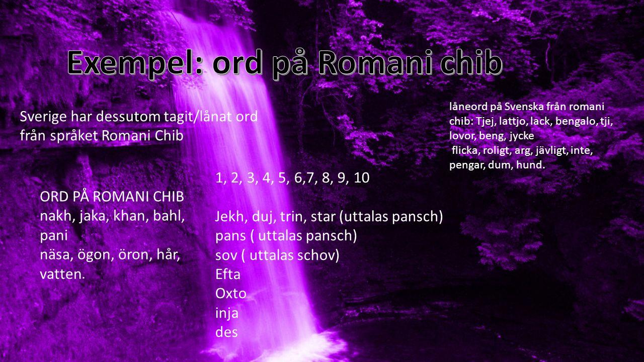 Sverige har dessutom tagit/lånat ord från språket Romani Chib låneord på Svenska från romani chib: Tjej, lattjo, lack, bengalo, tji, lovor, beng, jyck
