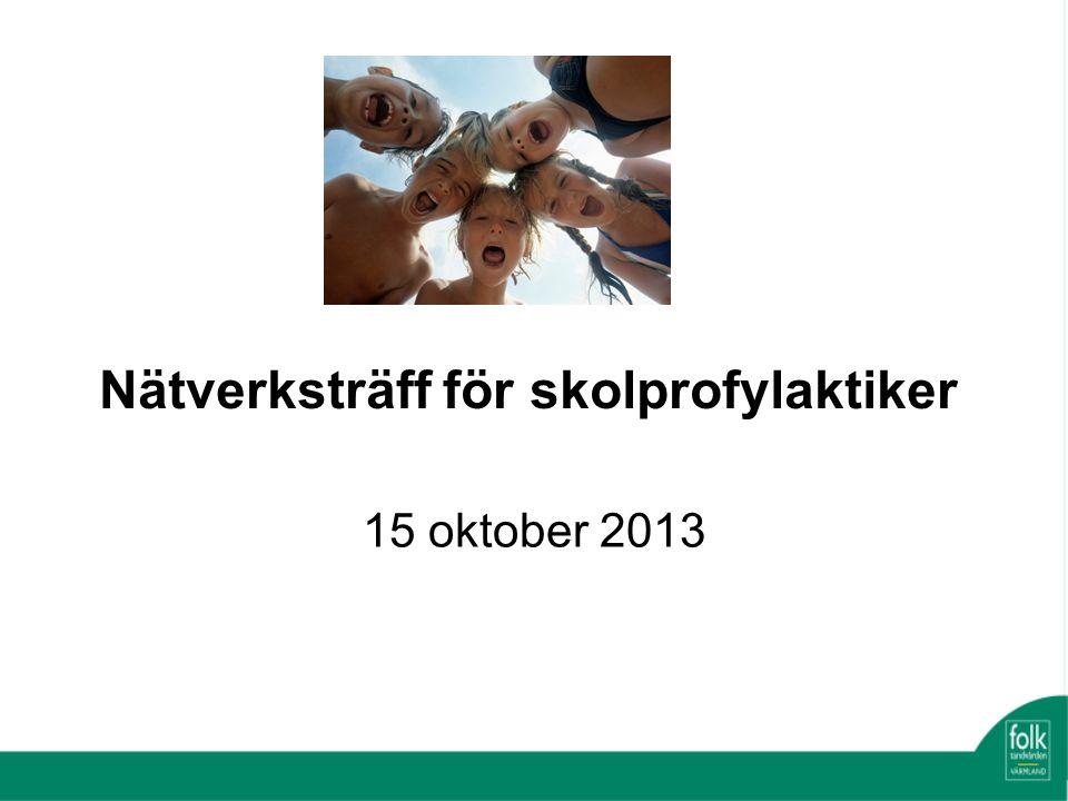 Nätverksträff för skolprofylaktiker 15 oktober 2013