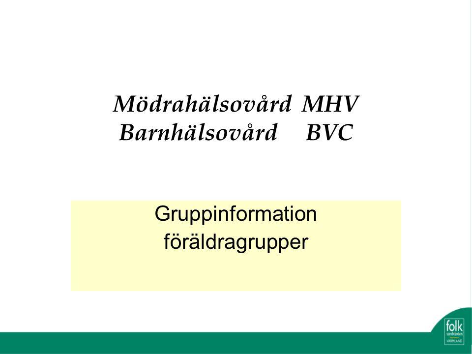 Mödrahälsovård MHV Barnhälsovård BVC Gruppinformation föräldragrupper
