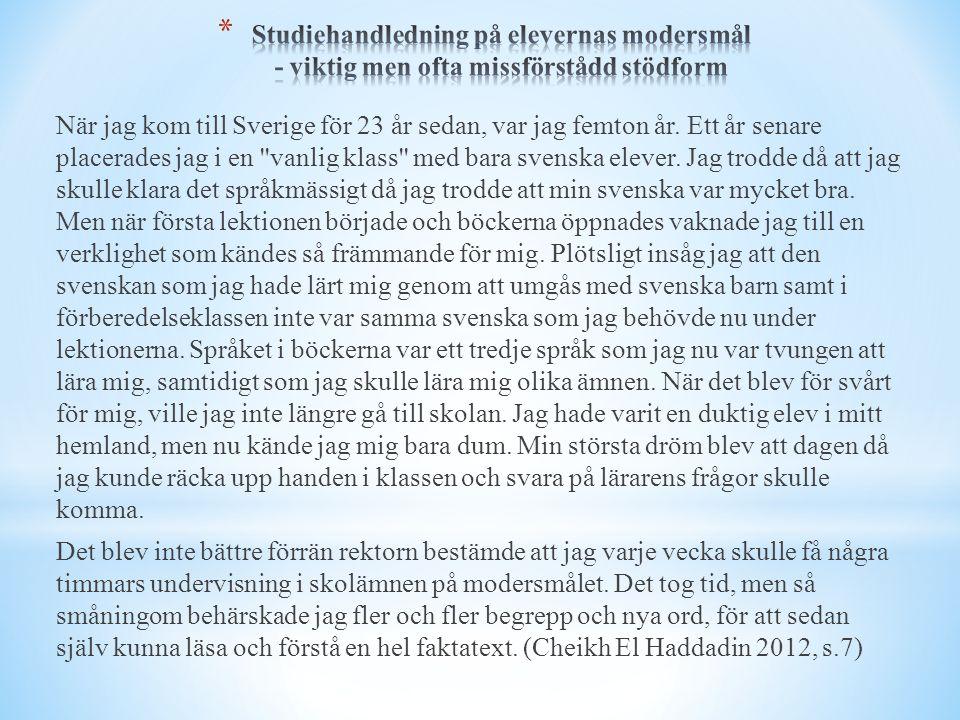 När jag kom till Sverige för 23 år sedan, var jag femton år. Ett år senare placerades jag i en ''vanlig klass'' med bara svenska elever. Jag trodde då