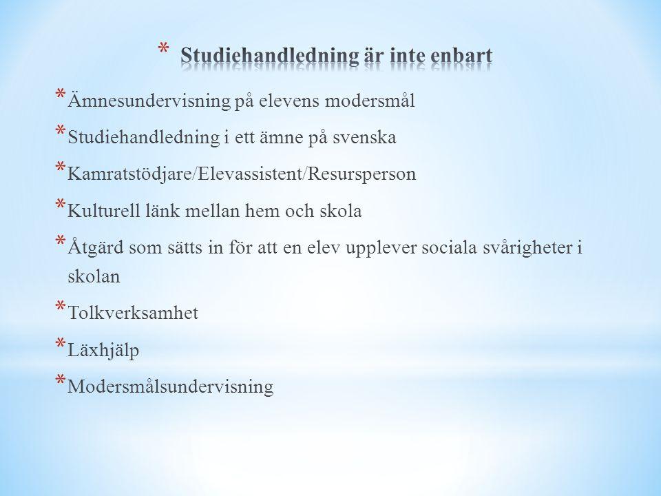 * Ämnesundervisning på elevens modersmål * Studiehandledning i ett ämne på svenska * Kamratstödjare/Elevassistent/Resursperson * Kulturell länk mellan