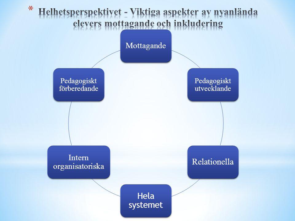 Mottagande Pedagogiskt utvecklande Relationella Hela systemet Intern organisatoriska Pedagogiskt förberedande