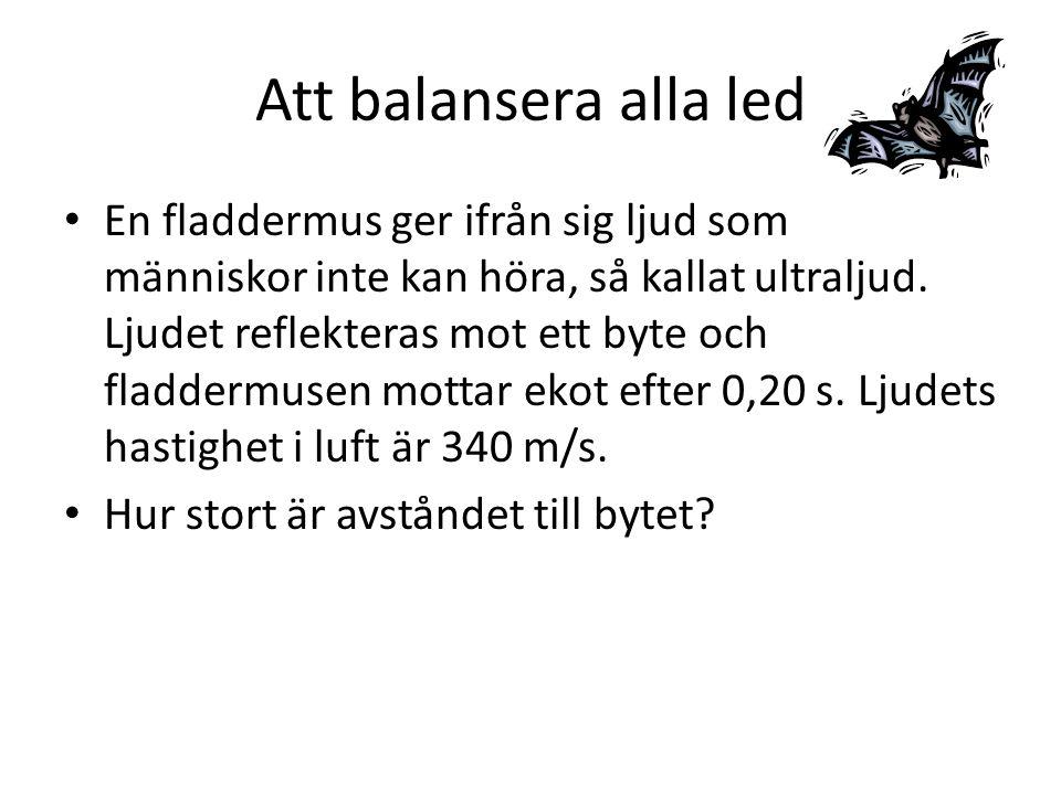 Att balansera alla led En fladdermus ger ifrån sig ljud som människor inte kan höra, så kallat ultraljud.