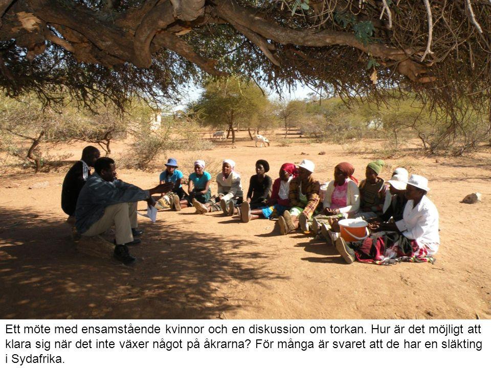 Ett möte med ensamstående kvinnor och en diskussion om torkan.