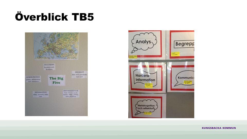 Stödstrukturer för att utveckla TB5 De stora frågorna, ex, Fly eller flytta? Begreppsschema, matris med de aktuella begreppen + wildcard Stödmall för jämförelser Analysmodellen för orsak och konsekvens om aktuella samhällsfrågor EPA-modellen Stödstrukturerna ger just struktur och hjälper eleverna i lärandet
