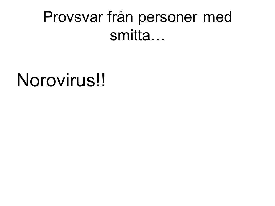 Provsvar från personer med smitta… Norovirus!!