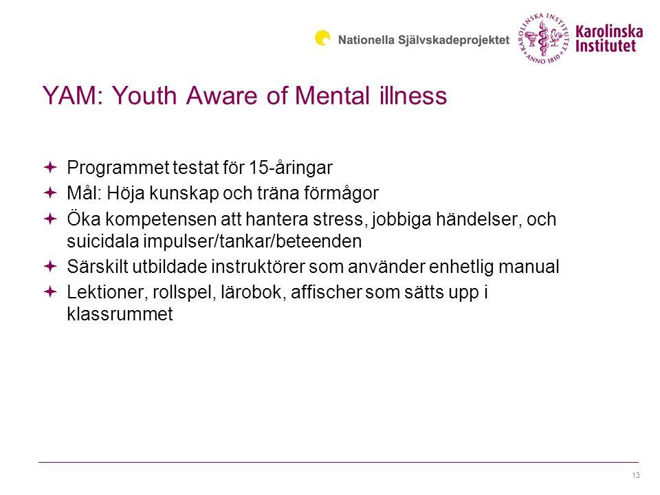 YAM: Youth Aware of Mental illness  Programmet testat för 15-åringar  Mål: Höja kunskap och träna förmågor  Öka kompetensen att hantera stress, jobbiga händelser, och suicidala impulser/tankar/beteenden  Särskilt utbildade instruktörer som använder enhetlig manual  Lektioner, rollspel, lärobok, affischer som sätts upp i klassrummet 13