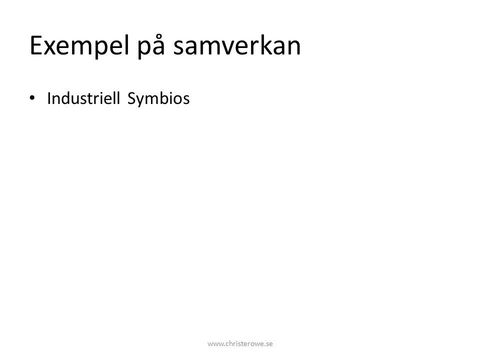 Exempel på samverkan Industriell Symbios www.christerowe.se