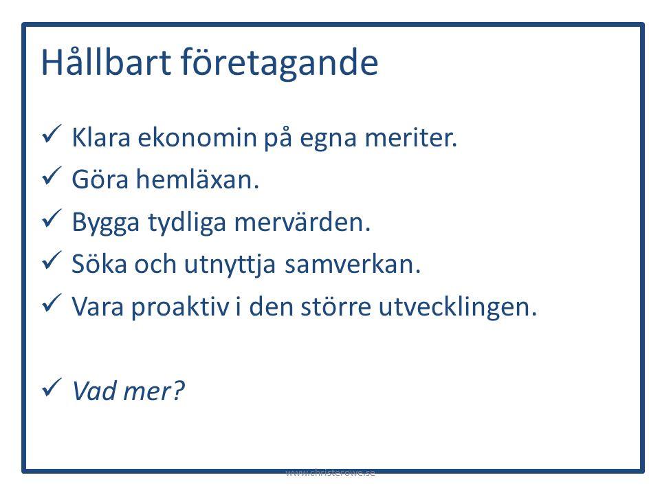 Hållbart företagande Klara ekonomin på egna meriter.