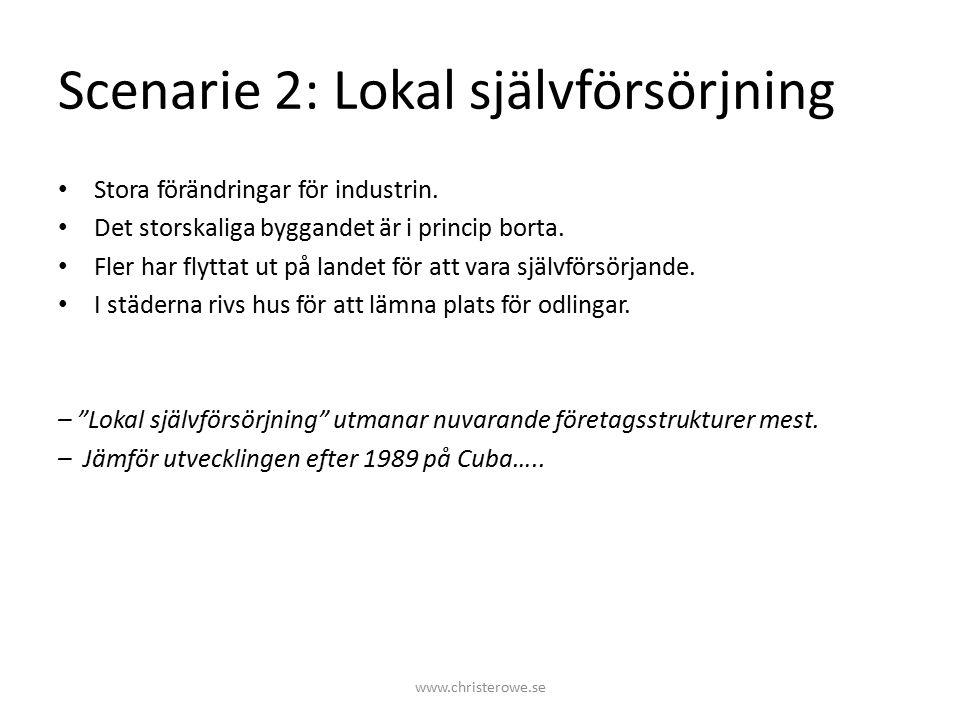 Scenarie 2: Lokal självförsörjning Stora förändringar för industrin.