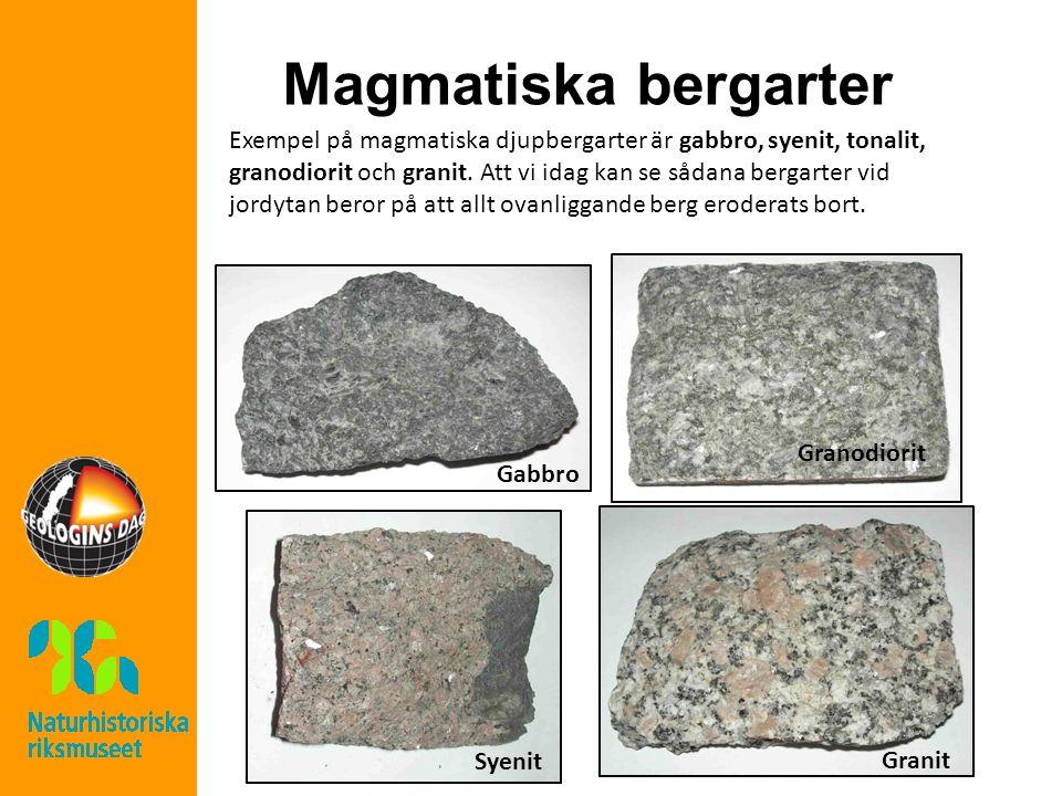 Magmatiska bergarter Exempel på magmatiska djupbergarter är gabbro, syenit, tonalit, granodiorit och granit.