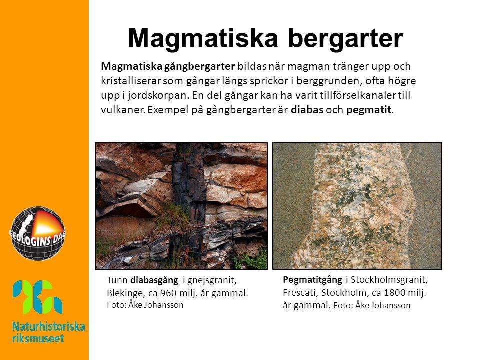 Magmatiska bergarter Magmatiska gångbergarter bildas när magman tränger upp och kristalliserar som gångar längs sprickor i berggrunden, ofta högre upp i jordskorpan.