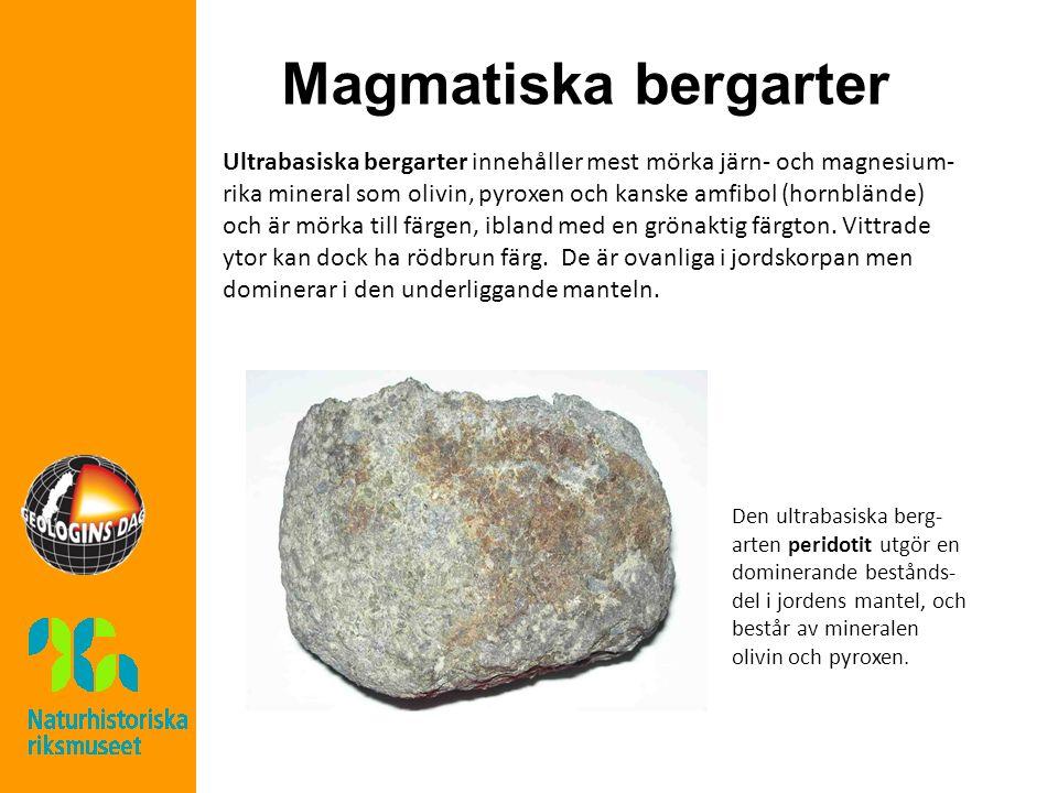 Magmatiska bergarter Ultrabasiska bergarter innehåller mest mörka järn- och magnesium- rika mineral som olivin, pyroxen och kanske amfibol (hornblände) och är mörka till färgen, ibland med en grönaktig färgton.
