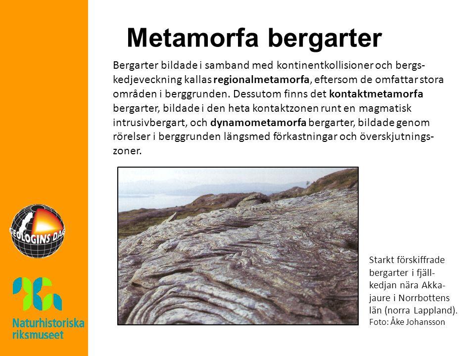 Metamorfa bergarter Bergarter bildade i samband med kontinentkollisioner och bergs- kedjeveckning kallas regionalmetamorfa, eftersom de omfattar stora områden i berggrunden.