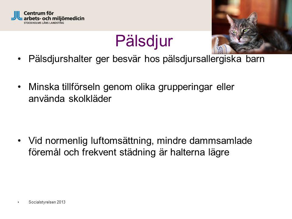 Pälsdjur Pälsdjurshalter ger besvär hos pälsdjursallergiska barn Minska tillförseln genom olika grupperingar eller använda skolkläder Vid normenlig luftomsättning, mindre dammsamlade föremål och frekvent städning är halterna lägre Socialstyrelsen 2013