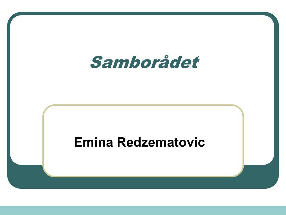 Samborådet Emina Redzematovic