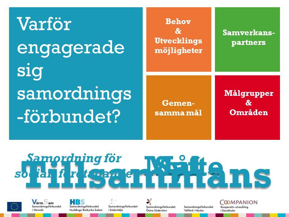 """+ Syfte """"Utreda och ta fram en plan för att utveckla de sociala företagandet i nio kommuner i södra delen av Stockholm i samverkan med partners och de"""