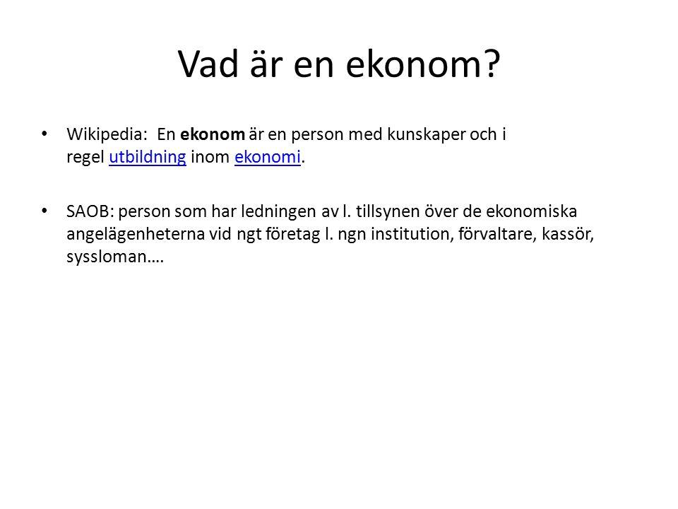 Vad är en ekonom.