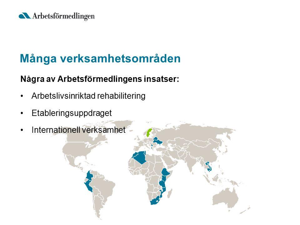 Många verksamhetsområden Några av Arbetsförmedlingens insatser: Arbetslivsinriktad rehabilitering Etableringsuppdraget Internationell verksamhet