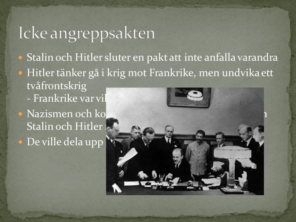 Hitlers dröm om Det tredje riket - En tysk stormakt Anfaller sitt gamla hemland – blir mottagen som en hjälte av många Startar ett arbete att göra Österrike till nazistiskt - Det tredje riket ska bli större…
