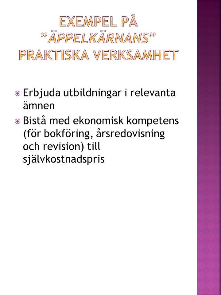  Bistå med ekonomisk kompetens (för bokföring, årsredovisning och revision) till självkostnadspris