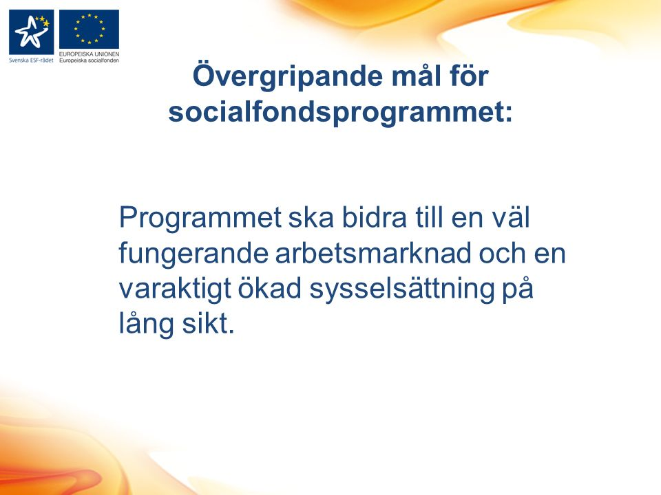 Programmet ska bidra till en väl fungerande arbetsmarknad och en varaktigt ökad sysselsättning på lång sikt.