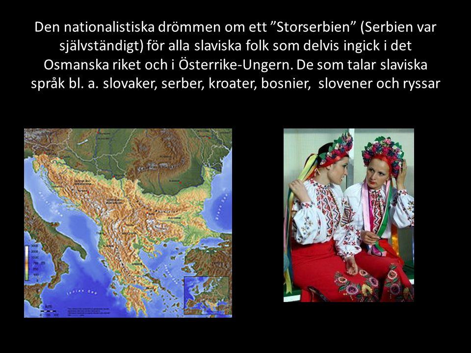 Den nationalistiska drömmen om ett Storserbien (Serbien var självständigt) för alla slaviska folk som delvis ingick i det Osmanska riket och i Österrike-Ungern.