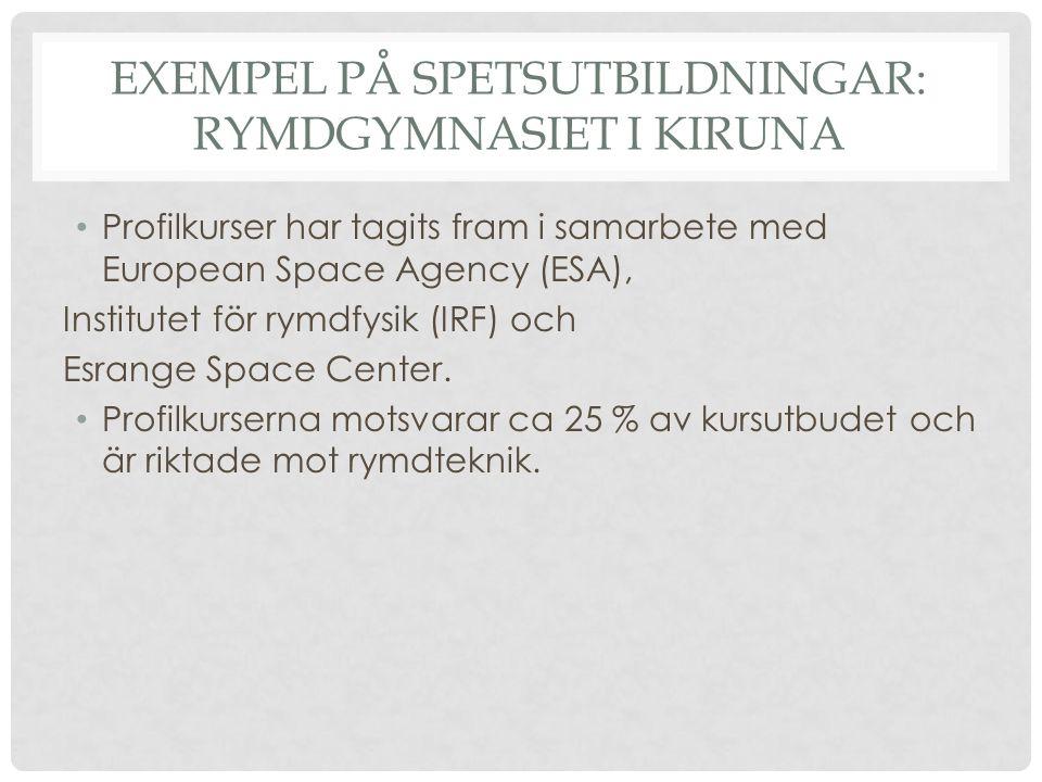 EXEMPEL PÅ SPETSUTBILDNINGAR: RYMDGYMNASIET I KIRUNA Profilkurser har tagits fram i samarbete med European Space Agency (ESA), Institutet för rymdfysik (IRF) och Esrange Space Center.